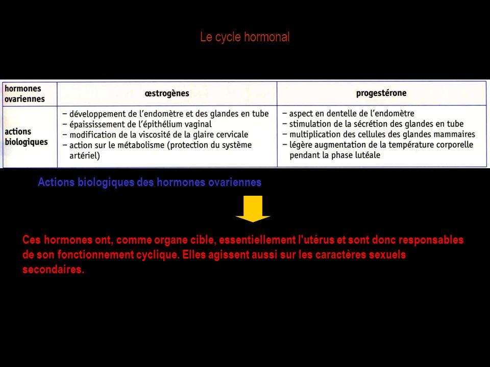 Le cycle hormonal Ces hormones ont, comme organe cible, essentiellement l'utérus et sont donc responsables de son fonctionnement cyclique. Elles agiss