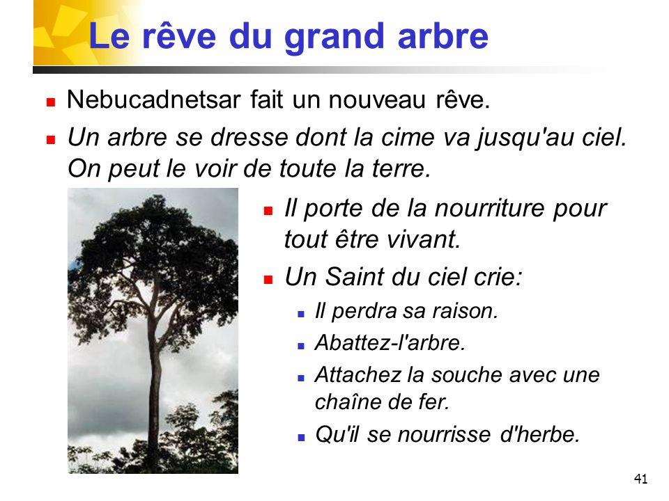 41 Le rêve du grand arbre Nebucadnetsar fait un nouveau rêve. Un arbre se dresse dont la cime va jusqu'au ciel. On peut le voir de toute la terre. Il