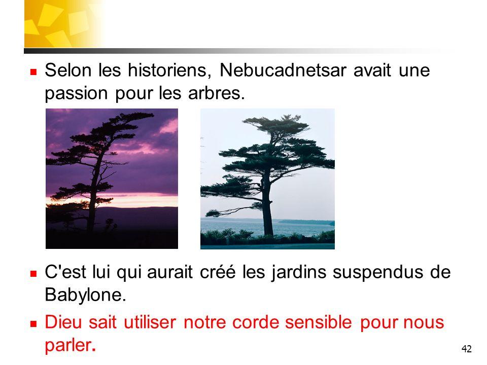 42 Selon les historiens, Nebucadnetsar avait une passion pour les arbres. C'est lui qui aurait créé les jardins suspendus de Babylone. Dieu sait utili