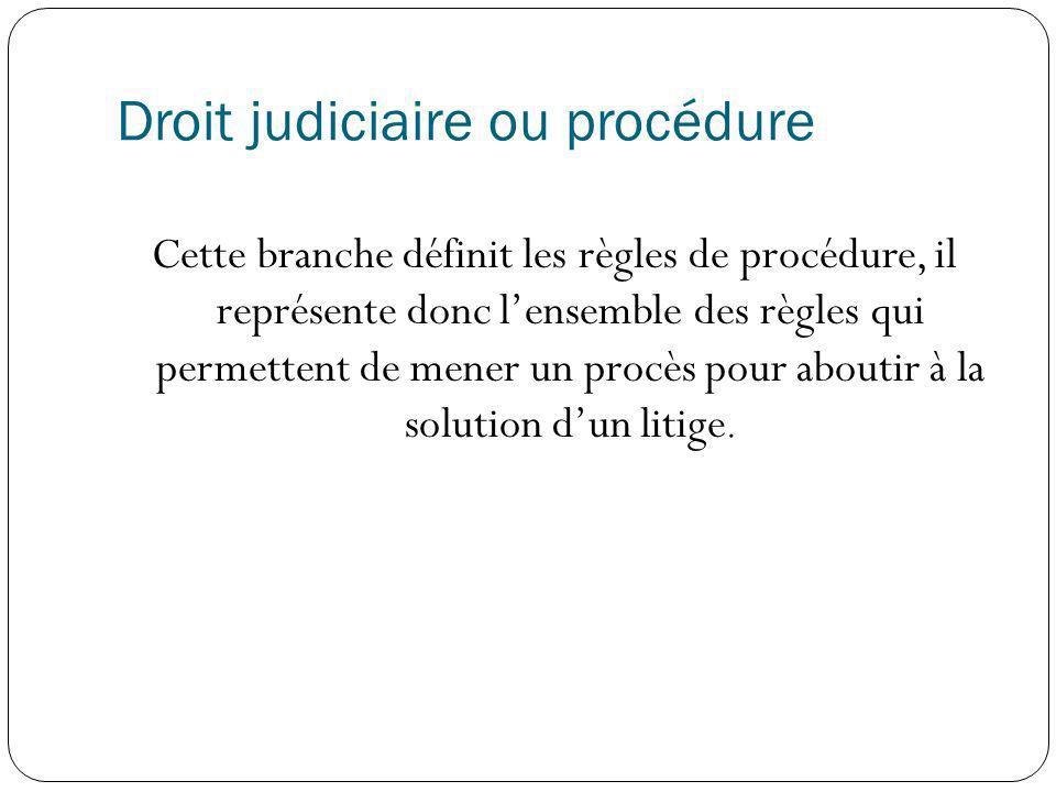 Droit judiciaire ou procédure Cette branche définit les règles de procédure, il représente donc lensemble des règles qui permettent de mener un procès