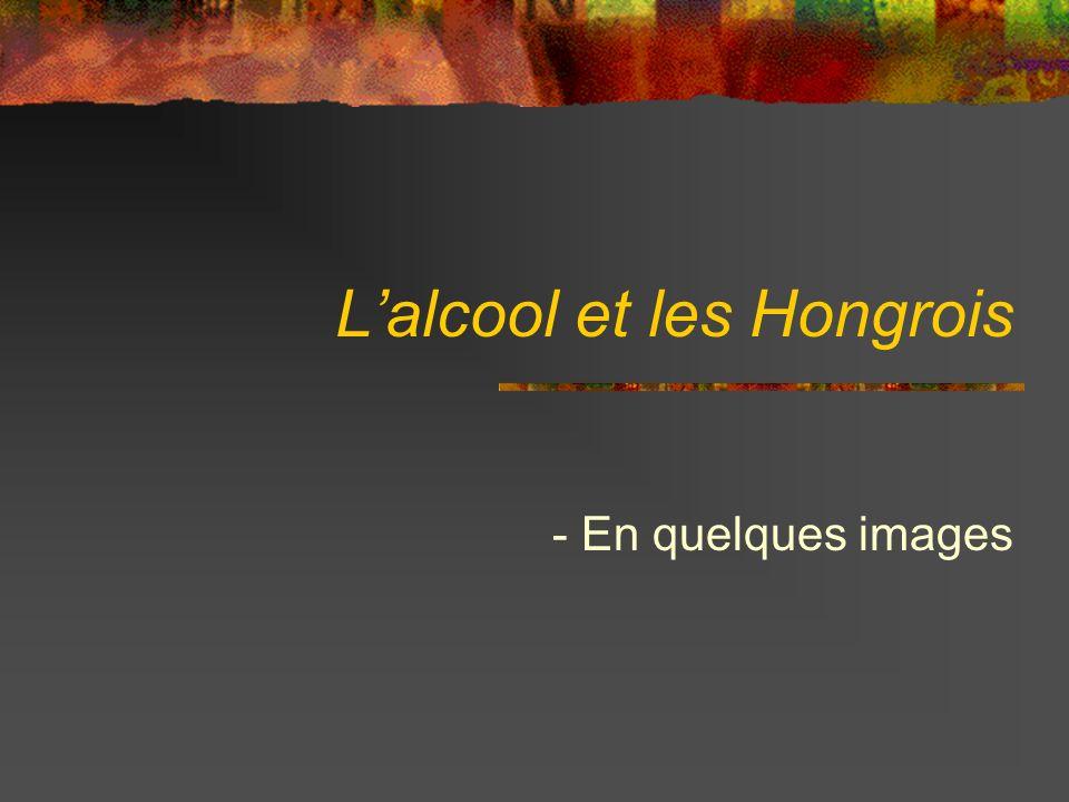 Lalcool et les Hongrois - En quelques images
