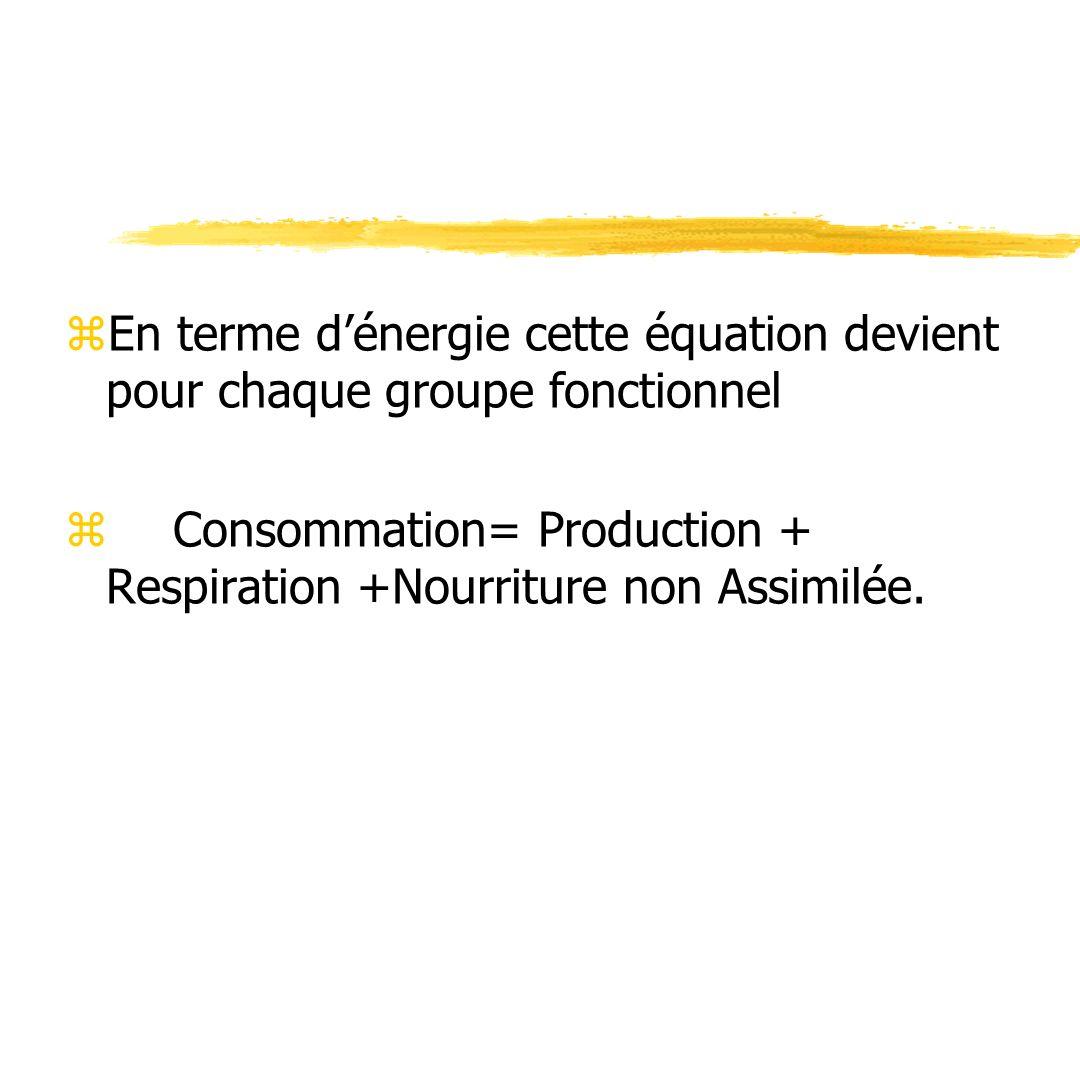 zEn terme dénergie cette équation devient pour chaque groupe fonctionnel zConsommation= Production + Respiration +Nourriture non Assimilée.