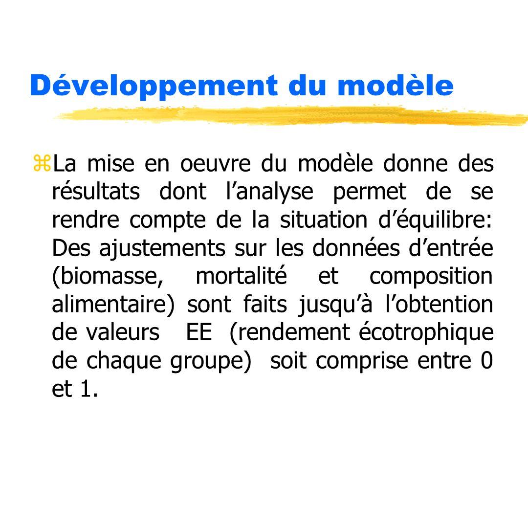 Développement du modèle zLa mise en oeuvre du modèle donne des résultats dont lanalyse permet de se rendre compte de la situation déquilibre: Des ajus