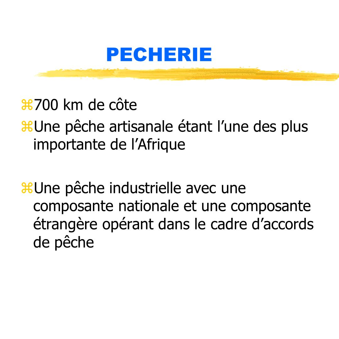 PECHERIE z700 km de côte zUne pêche artisanale étant lune des plus importante de lAfrique zUne pêche industrielle avec une composante nationale et une