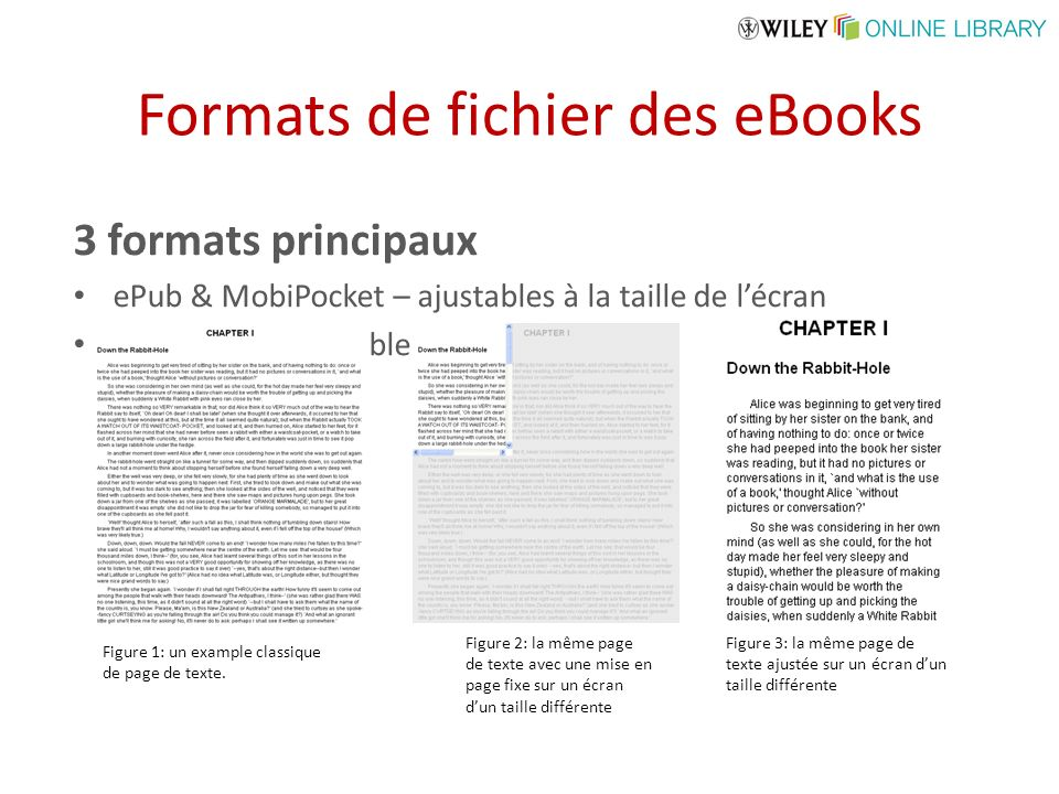 Formats de fichier des eBooks 3 formats principaux ePub & MobiPocket – ajustables à la taille de lécran ePDF – non-ajustable Figure 1: un example clas