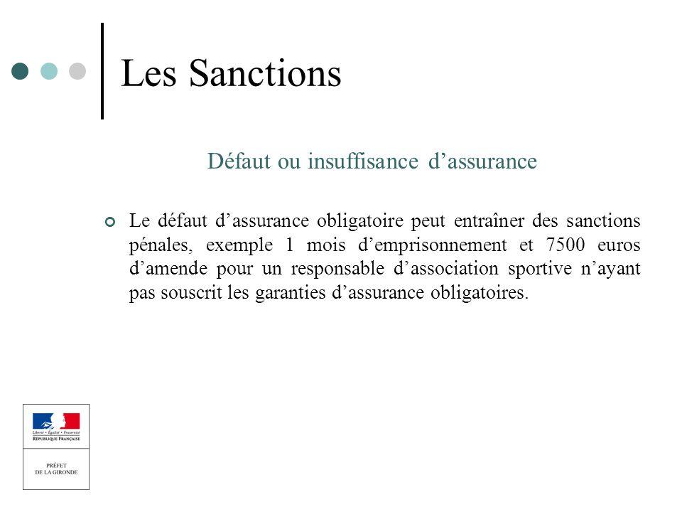 Les Sanctions Défaut ou insuffisance dassurance Le défaut dassurance obligatoire peut entraîner des sanctions pénales, exemple 1 mois demprisonnement