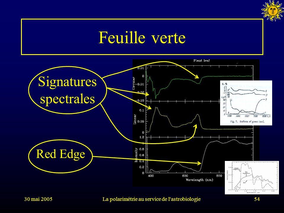 30 mai 2005La polarimétrie au service de l'astrobiologie54 Feuille verte Signatures spectrales Red Edge