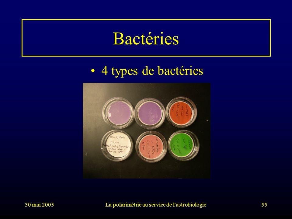 30 mai 2005La polarimétrie au service de l'astrobiologie55 Bactéries 4 types de bactéries