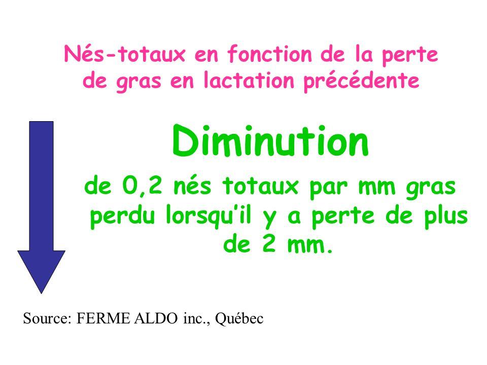 Diminution de 0,2 nés totaux par mm gras perdu lorsquil y a perte de plus de 2 mm. Source: FERME ALDO inc., Québec
