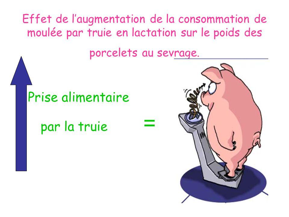 Effet de laugmentation de la consommation de moulée par truie en lactation sur le poids des porcelets au sevrage. Prise alimentaire par la truie =