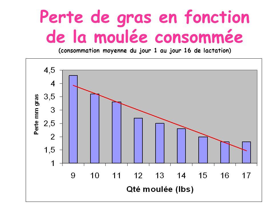 Perte de gras en fonction de la moulée consommée (consommation moyenne du jour 1 au jour 16 de lactation) raphe # 4