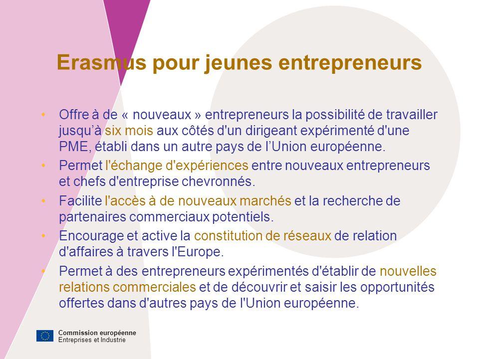 Commission européenne Entreprises et Industrie Comment ça fonctionne .