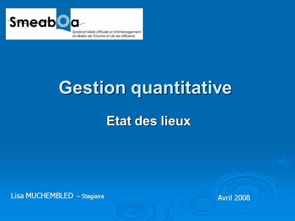 Gestion quantitative Etat des lieux Avril 2008 Lisa MUCHEMBLED – Stagiaire
