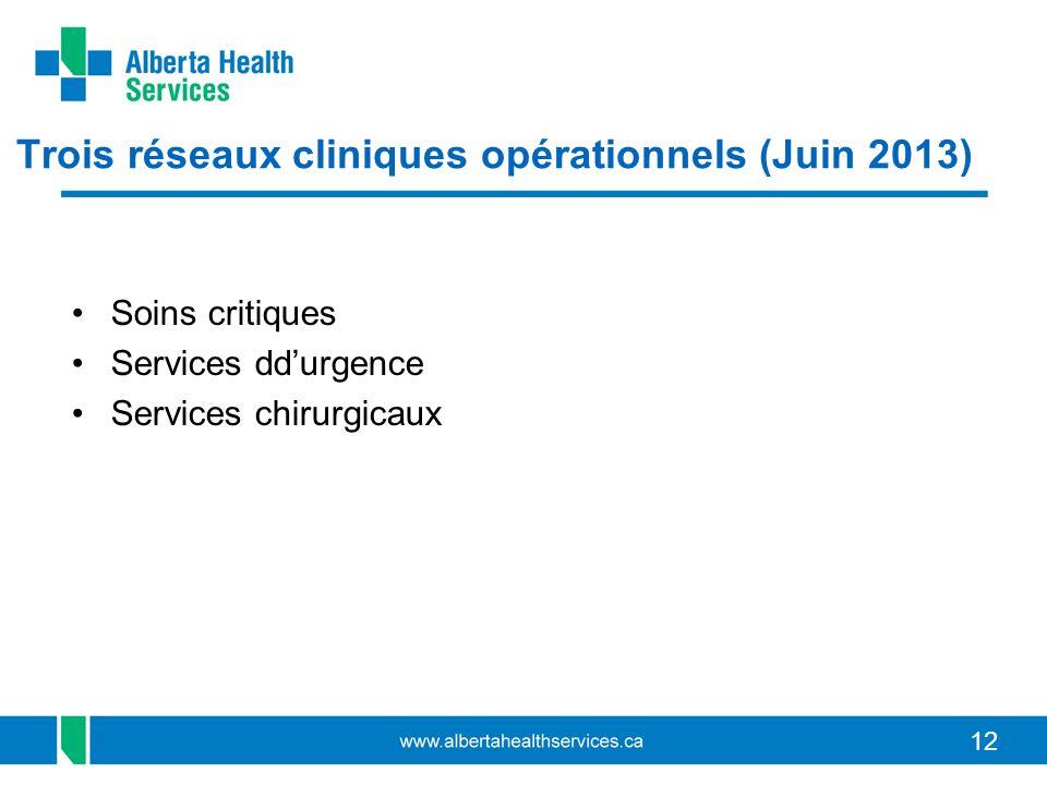 12 Trois réseaux cliniques opérationnels (Juin 2013) Soins critiques Services ddurgence Services chirurgicaux