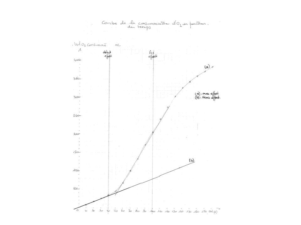 2 – Représenter la courbe de la consommation de dioxygène que lon aurait enregistré si ladolescent navait pas fourni deffort physique.