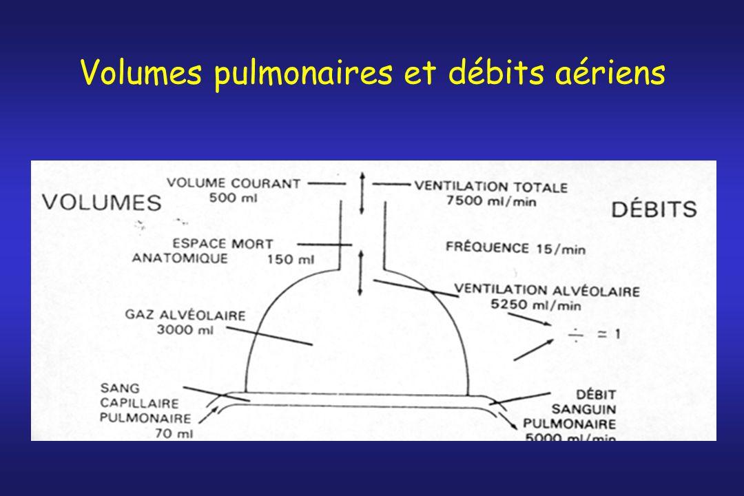 Volumes pulmonaires et débits aériens