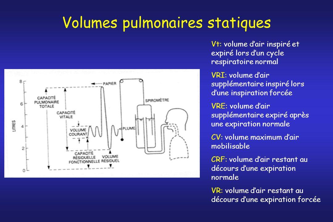 Volumes pulmonaires statiques Vt: volume dair inspiré et expiré lors dun cycle respiratoire normal VRI: volume dair supplémentaire inspiré lors dune i