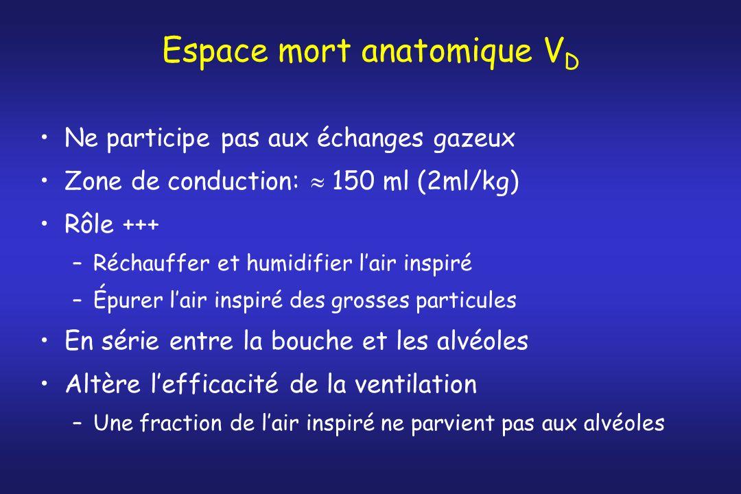 Espace mort anatomique V D Ne participe pas aux échanges gazeux Zone de conduction: 150 ml (2ml/kg) Rôle +++ –Réchauffer et humidifier lair inspiré –É