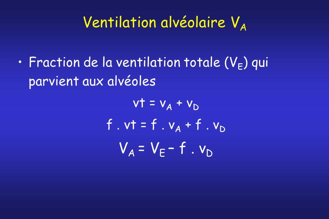 Ventilation alvéolaire V A Fraction de la ventilation totale (V E ) qui parvient aux alvéoles vt = v A + v D f. vt = f. v A + f. v D V A = V E – f. v