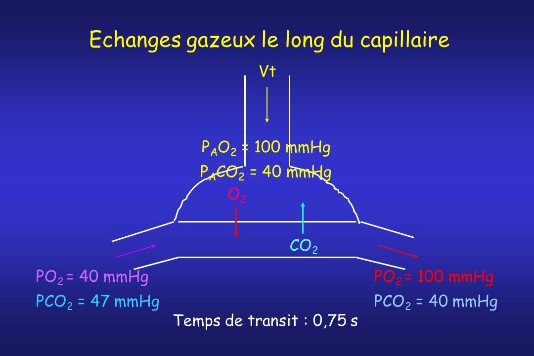 Echanges gazeux le long du capillaire O2O2 CO 2 Vt PO 2 = 40 mmHg PCO 2 = 47 mmHg PO 2 = 100 mmHg PCO 2 = 40 mmHg P A O 2 = 100 mmHg P A CO 2 = 40 mmH
