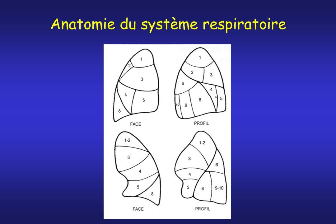 Résistances vasculaires pulmonaires