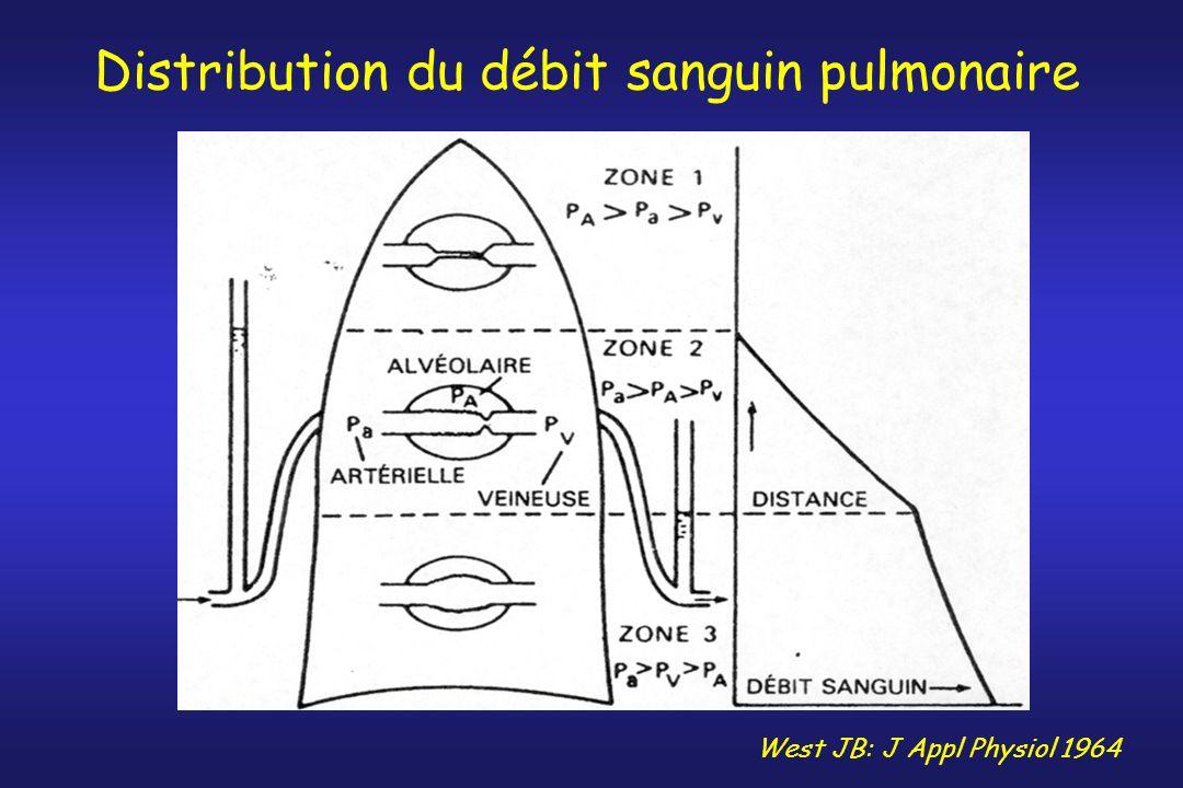 Distribution du débit sanguin pulmonaire West JB: J Appl Physiol 1964