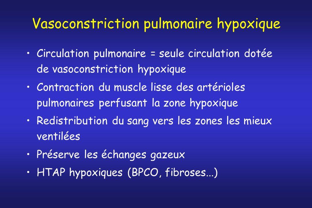 Vasoconstriction pulmonaire hypoxique Circulation pulmonaire = seule circulation dotée de vasoconstriction hypoxique Contraction du muscle lisse des a