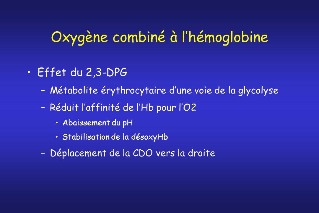 Oxygène combiné à lhémoglobine Effet du 2,3-DPG –Métabolite érythrocytaire dune voie de la glycolyse –Réduit laffinité de lHb pour lO2 Abaissement du
