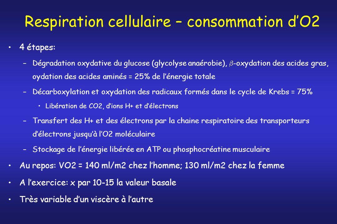 Respiration cellulaire – consommation dO2 4 étapes: –Dégradation oxydative du glucose (glycolyse anaérobie), -oxydation des acides gras, oydation des