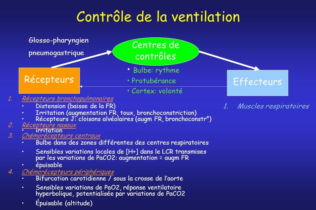 Contrôle de la ventilation Centres de contrôles Bulbe: rythme Protubérance Cortex: volonté Récepteurs 1.Récepteurs bronchopulmonaires Distension (bais