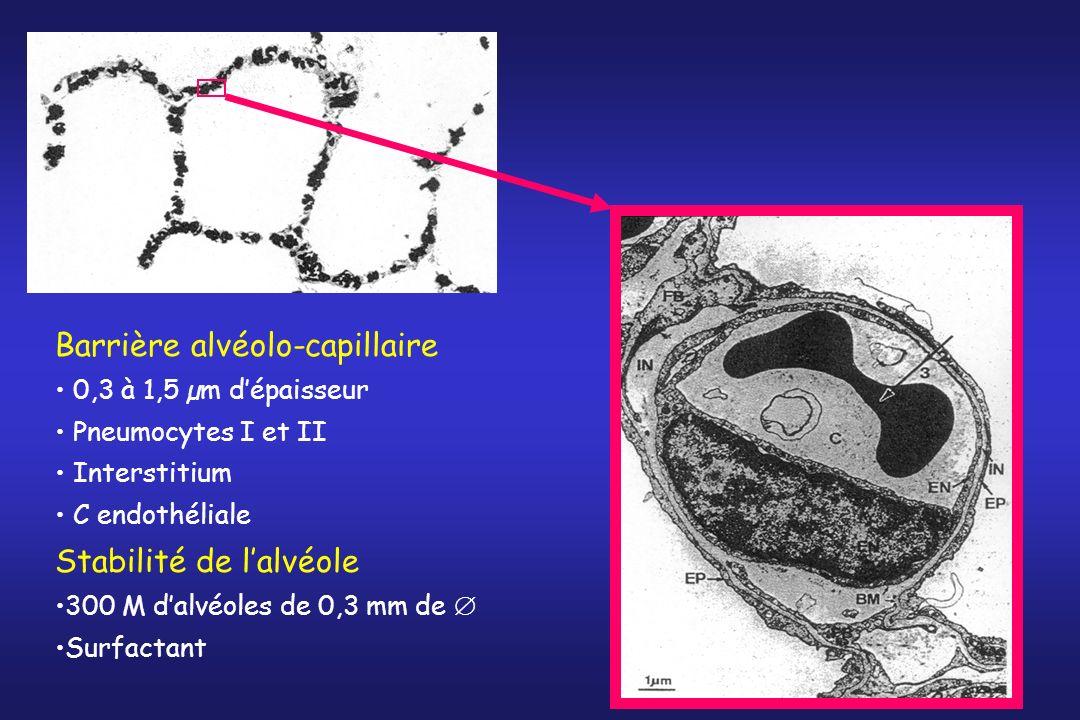 Echanges gazeux le long du capillaire O2O2 CO 2 Vt PO 2 = 40 mmHg PCO 2 = 47 mmHg PO 2 = 100 mmHg PCO 2 = 40 mmHg P A O 2 = 100 mmHg P A CO 2 = 40 mmHg Temps de transit : 0,75 s