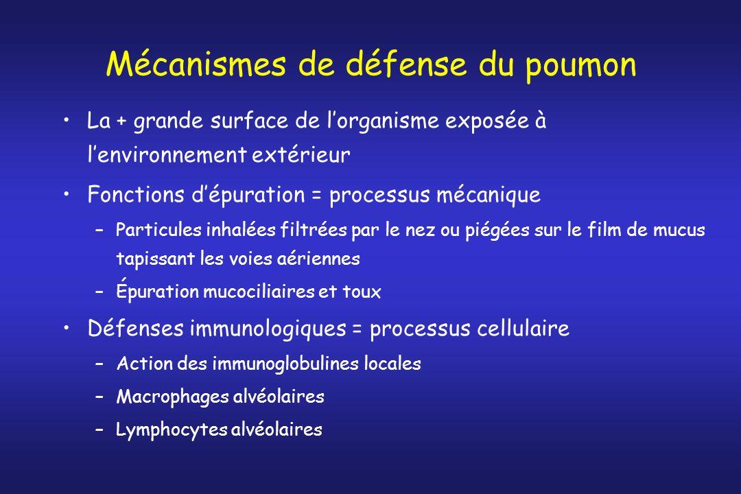 Mécanismes de défense du poumon La + grande surface de lorganisme exposée à lenvironnement extérieur Fonctions dépuration = processus mécanique –Parti
