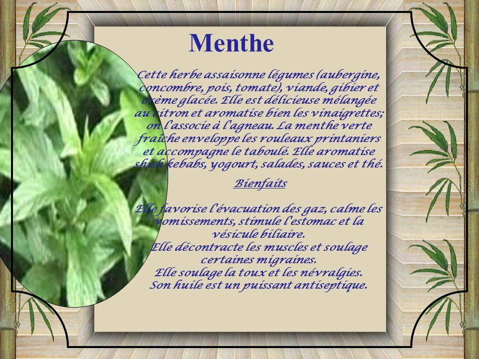 La mélisse (aussi nommée «citronnelle») accompagne bien les aliments âcres. Elle aromatise les currys indiens, les soupes et les sauces; elle assaison