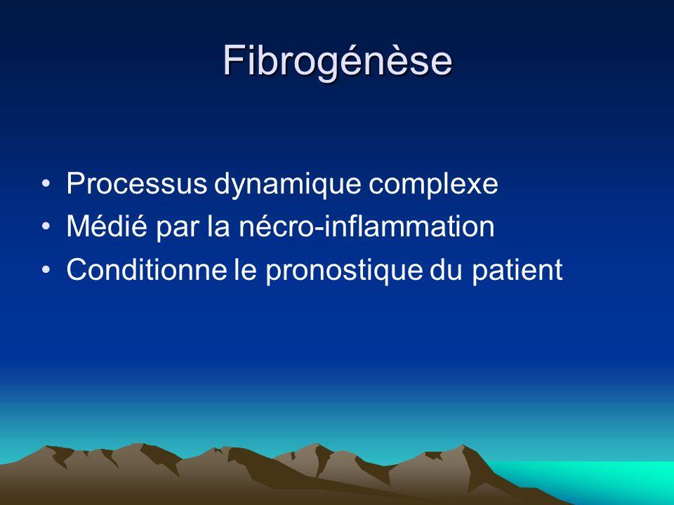 Fibrogénèse Processus dynamique complexe Médié par la nécro-inflammation Conditionne le pronostique du patient