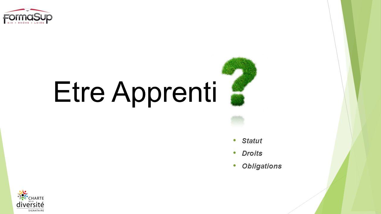 Statut Droits Obligations Etre Apprenti