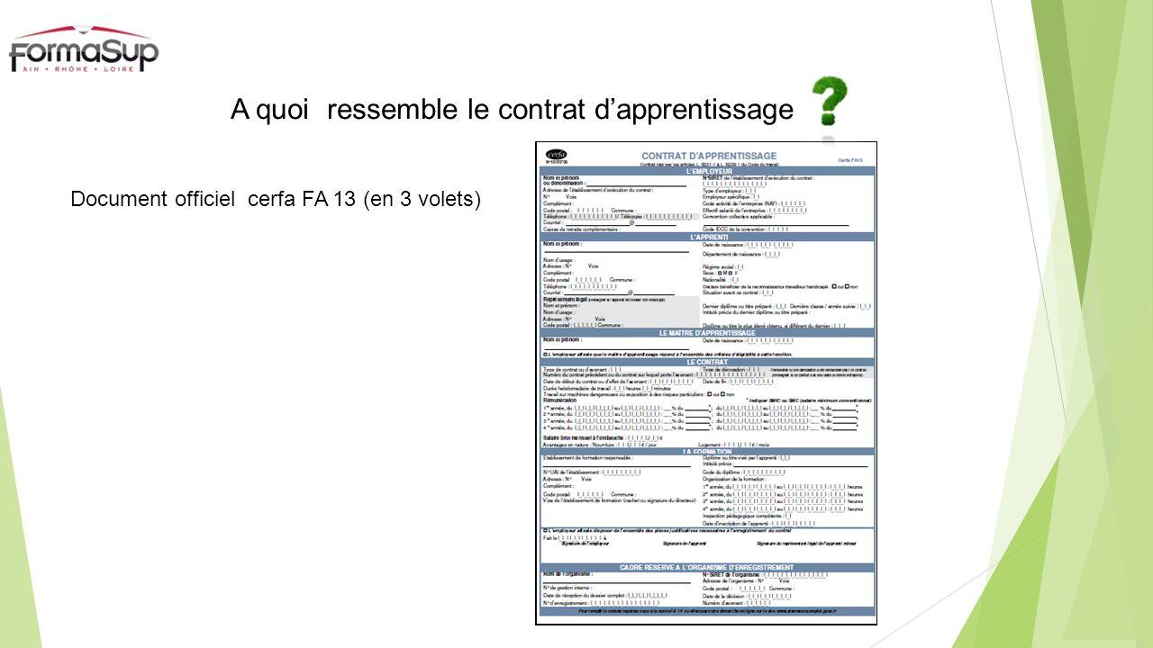 A quoi ressemble le contrat dapprentissage Document officiel cerfa FA 13 (en 3 volets)