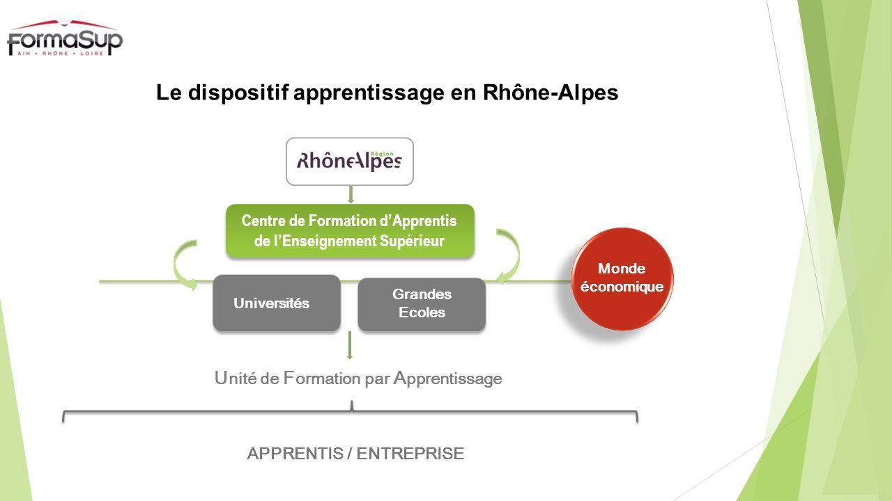 Le CFA FormaSup Ain-Rhône-Loire Monde économique Créé en 1995 par les organisations professionnelles (MEDEF, CGPME, CCI) et les représentants des Universités et Grandes Ecoles afin de développer, avec le Conseil Régional Rhône-Alpes lapprentissage dans lenseignement supérieur 1 er CFA de lenseignement Supérieur en Rhône-Alpes + de 100 Unités de Formation par Apprentissage + de 2 200 Apprentis à la rentrée 2013