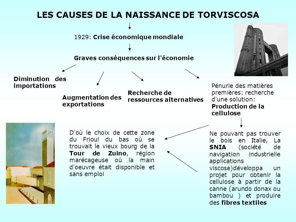 LES CAUSES DE LA NAISSANCE DE TORVISCOSA 1929: Crise économique mondiale Diminution des importations Augmentation des exportations Recherche de ressou