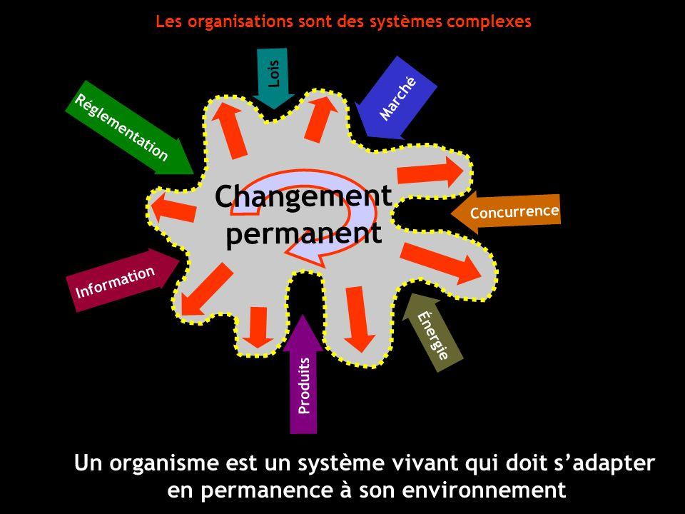 Changement permanent Information Réglementation Produits Marché Lois Concurrence Énergie Les organisations sont des systèmes complexes Un organisme es