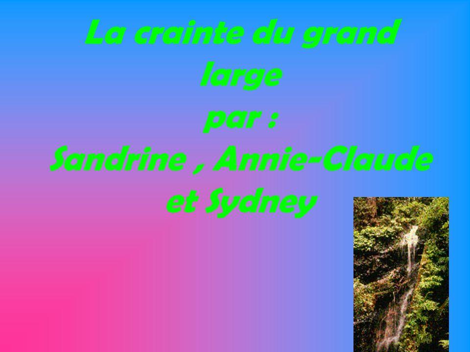 La crainte du grand large par : Sandrine, Annie-Claude et Sydney