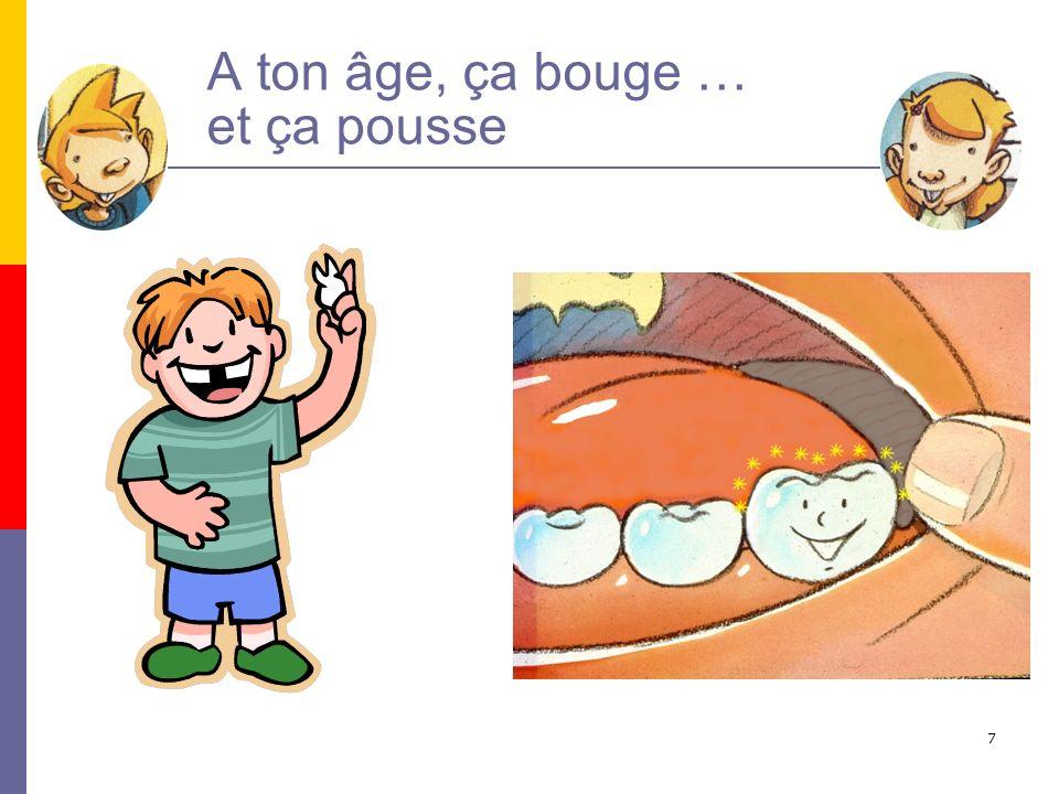 8 Les dents définitives Elles sont au nombre de 32 Entre 6 et 14 elles cohabitent avec les dents de lait ; on parle alors de denture mixte.
