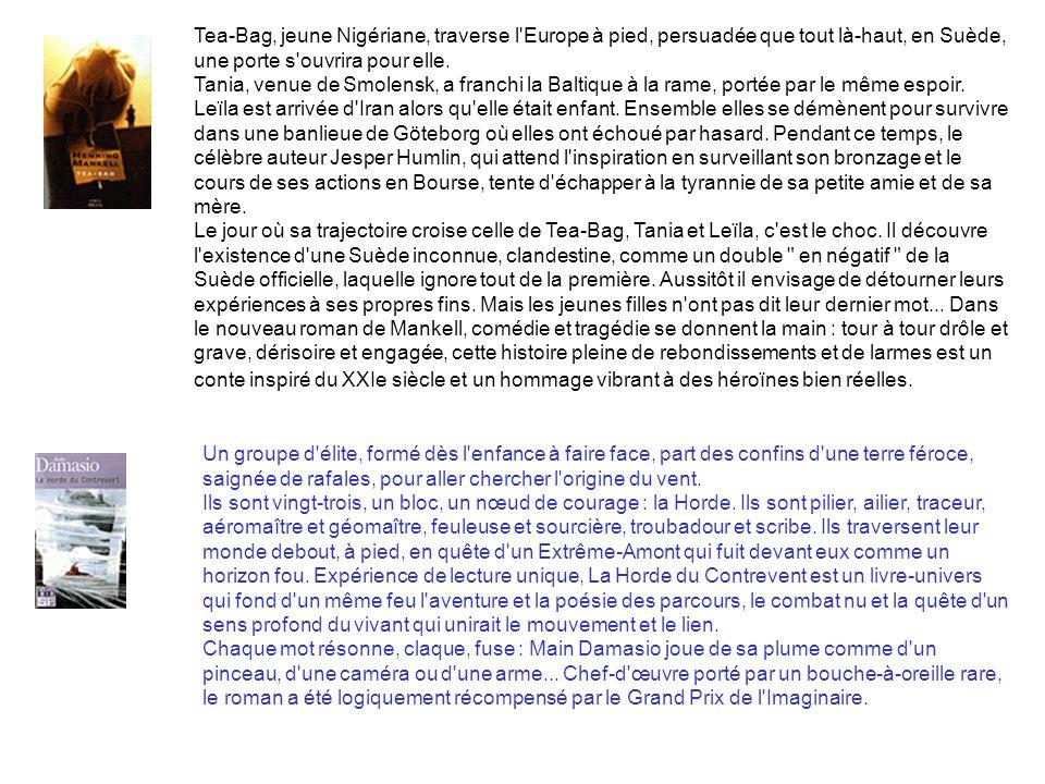 Tea-Bag, jeune Nigériane, traverse l Europe à pied, persuadée que tout là-haut, en Suède, une porte s ouvrira pour elle.