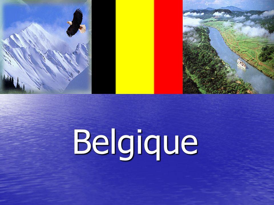 Le Royaume de Belgique Le travail est fait par un élève de 10 classe Bélorybets Artem.