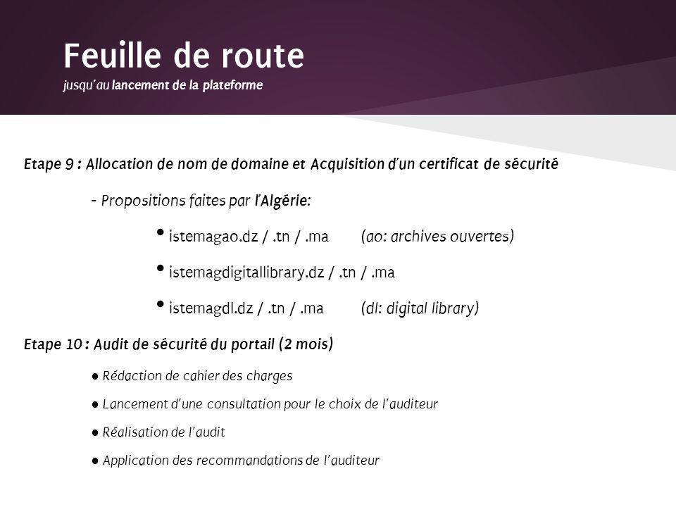 Etape 9 : Allocation de nom de domaine et Acquisition dun certificat de sécurité - Propositions faites par lAlgérie : istemagao.dz /.tn /.ma (ao: arch