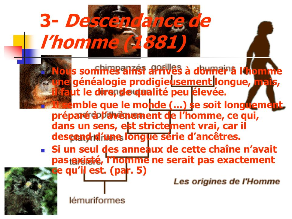 3- Descendance de lhomme (1881) Nous sommes ainsi arrivés à donner à lhomme une généalogie prodigieusement longue, mais, il faut le dire, de qualité peu élevée.