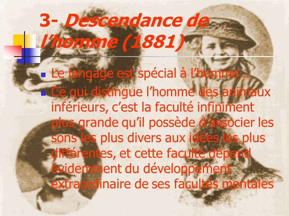 3- Descendance de lhomme (1881) Le langage est spécial à lhomme… Ce qui distingue lhomme des animaux inférieurs, cest la faculté infiniment plus grand