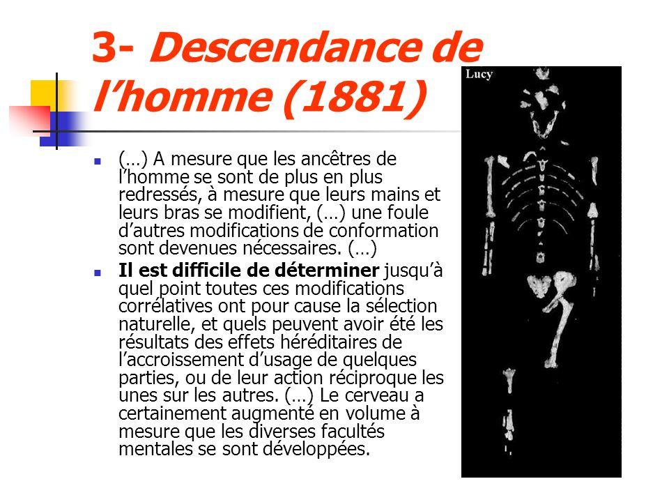 3- Descendance de lhomme (1881) (…) A mesure que les ancêtres de lhomme se sont de plus en plus redressés, à mesure que leurs mains et leurs bras se modifient, (…) une foule dautres modifications de conformation sont devenues nécessaires.