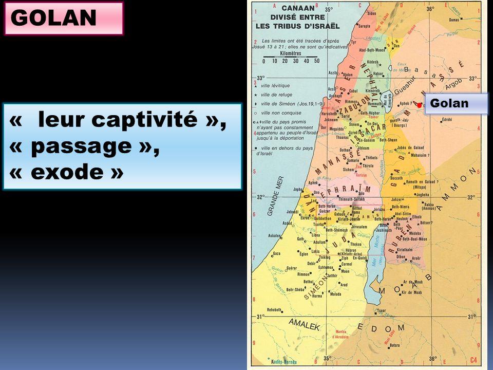 Golan GOLAN « leur captivité », « passage », « exode »