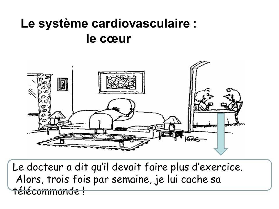 Le système cardiovasculaire : le cœur Le docteur a dit quil devait faire plus dexercice. Alors, trois fois par semaine, je lui cache sa télécommande !