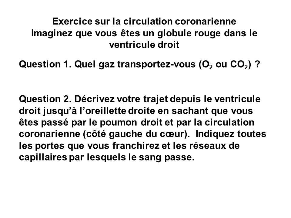 Exercice sur la circulation coronarienne Imaginez que vous êtes un globule rouge dans le ventricule droit Question 1. Quel gaz transportez-vous (O 2 o
